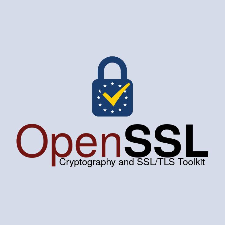 OpenSSL 1.1.1g